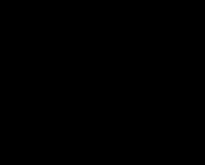 Longboard mit Totenkopf
